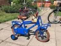 12 collu Transport bike Alpina