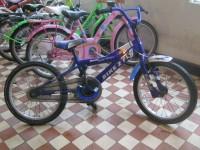 18 collu Bike To Fly